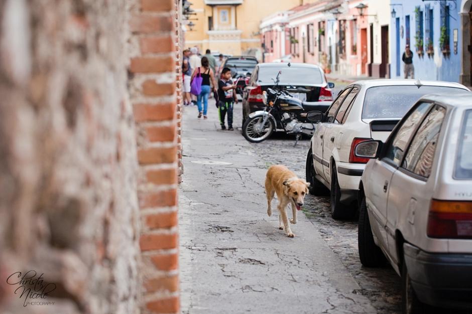 Guatemala 023
