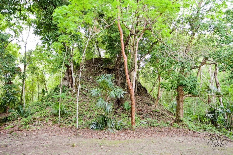 While this may look just like any other hill, it's incredible to think it's actually one of several unexcavated pyramids in Tikal!