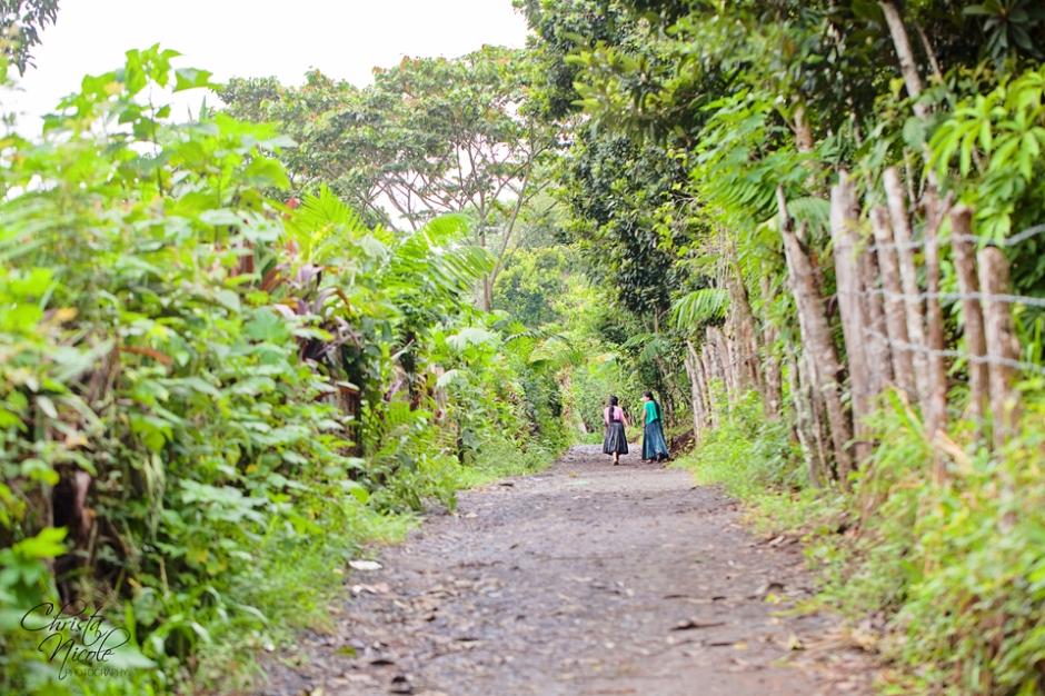 Guatemala 264