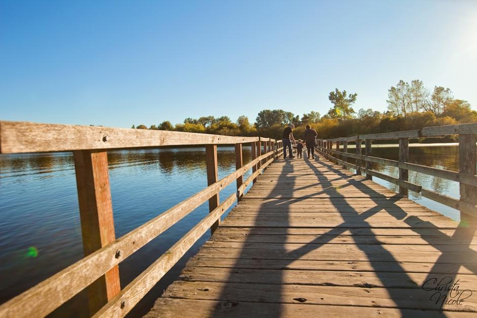 Swan Lake 783-2