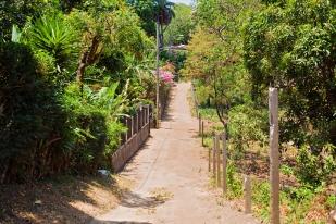 Nicaragua 1156