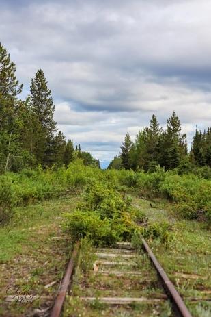 Yukon 504