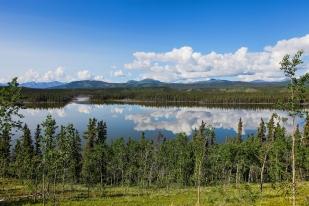 Yukon 549